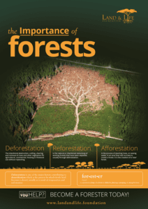 Poster on Importance of Trees